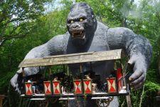 King-Kong Le PAL