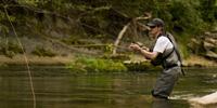 La Pêche dans l'Allier