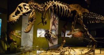Paléopolis musée dinosaures