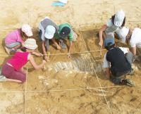 fouilles archéologiques enfants dans l'Allier © Paléopolis