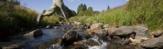 Rivières et plans d'eaux