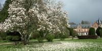 L'arboretum de balaine en Allier