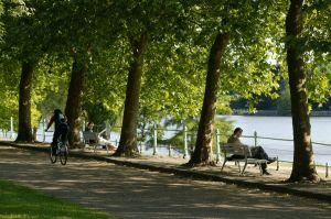 Parcs d'Allier : Parc Napoléon et Parc Kennedy © Christophe Camus