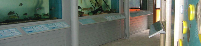 Maison Aquarium du Val de Besbre