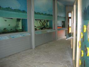 Maison Aquarium du Val de Besbre - Allier © CDT Allier